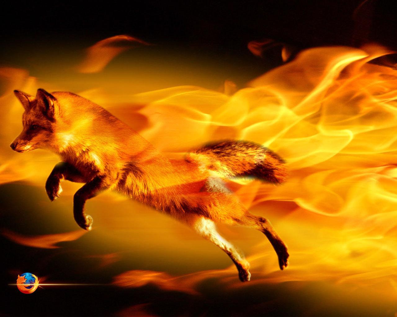Mozilla Firefox : le roi des navigateurs